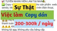 cong-viec-copy-dan-la-gi