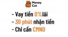 vay-tien-money-cat